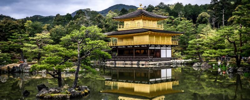 Poetyckość japońskich ogrodów