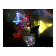 Ostrość, głębia, kadr i cyk fotka już jest !!! kolory