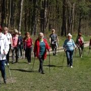I Rajd Nordic Walking 4