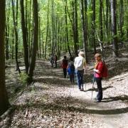 I Rajd Nordic Walking 13