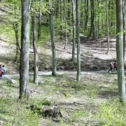 I Rajd Nordic Walking 19