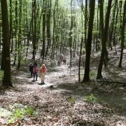 I Rajd Nordic Walking 17